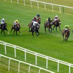 racing post racecards